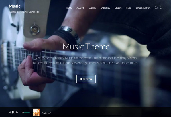 11.Steve Cadey WordPress Music Theme
