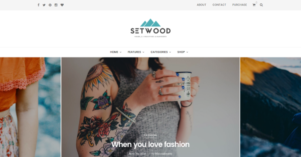 17.Setwood WordPress Blog & eCommerce Shop Theme